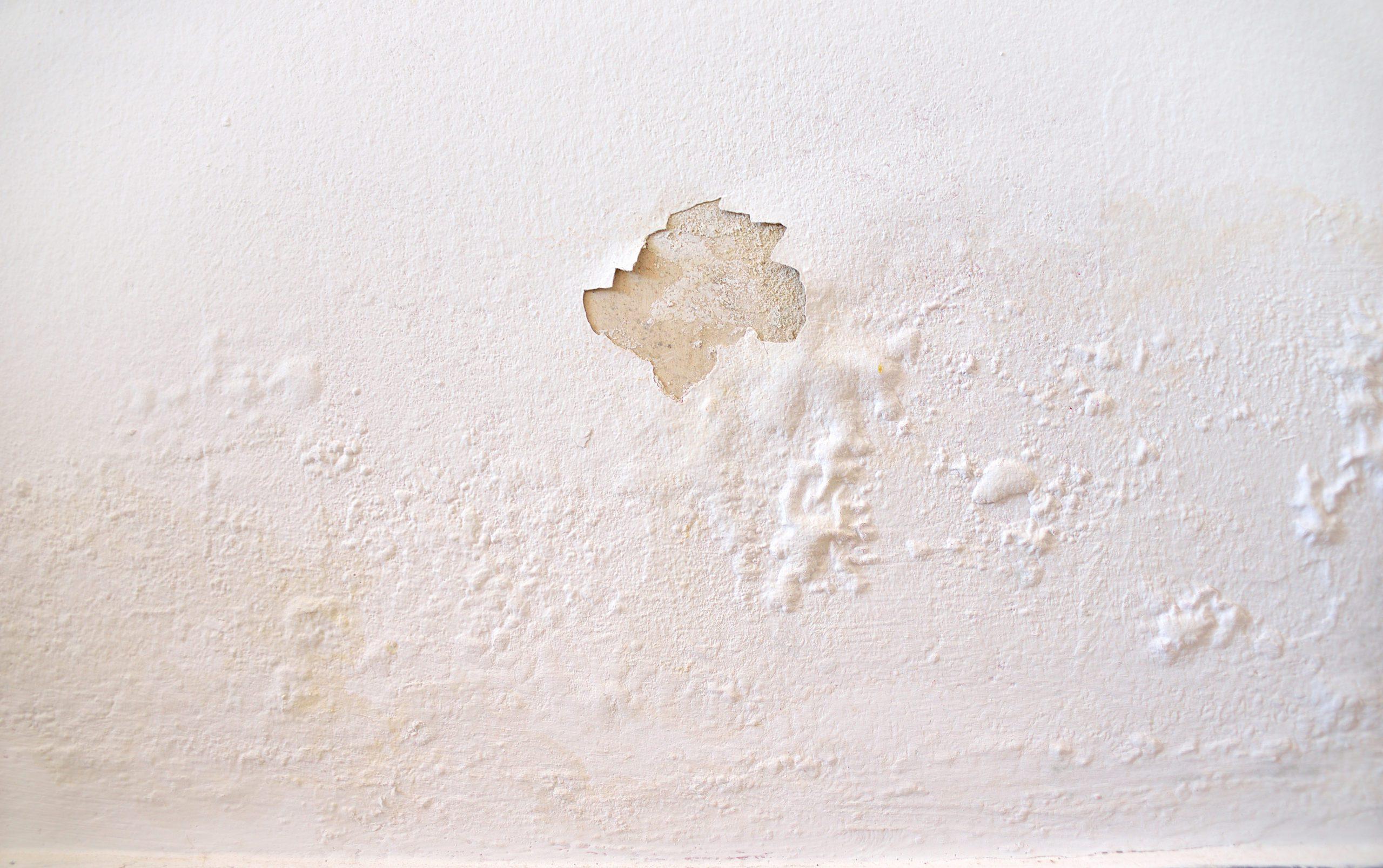 Can You Repair Water-Damaged Drywall?