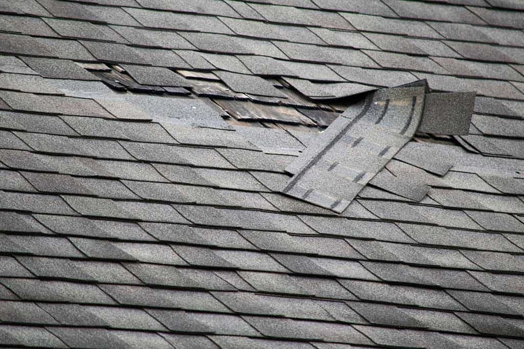 Wind damage tearing shingles off roof